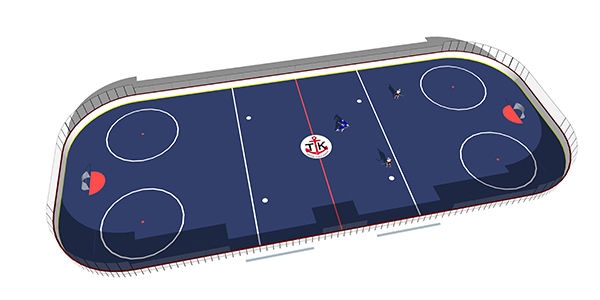 Thomas James Memorial Rink Plan Rendering