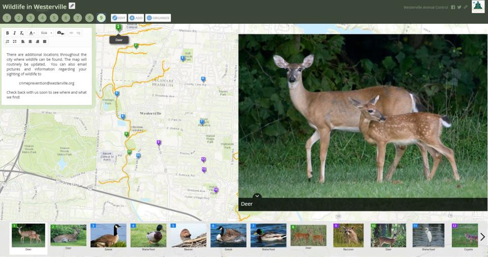 Wildlife in Westerville Web Application
