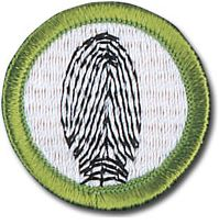 FP Merit Badge