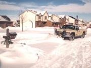 Snow - 96 Blizzard